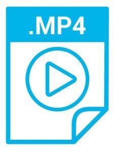 mp4 234x300 1