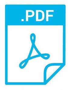 pdf 232x300 1