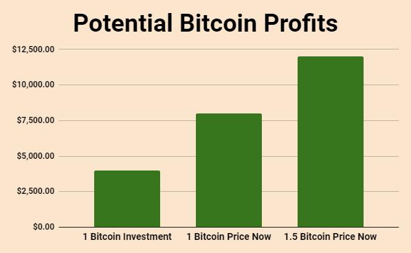 Potential Bitcoin Profit